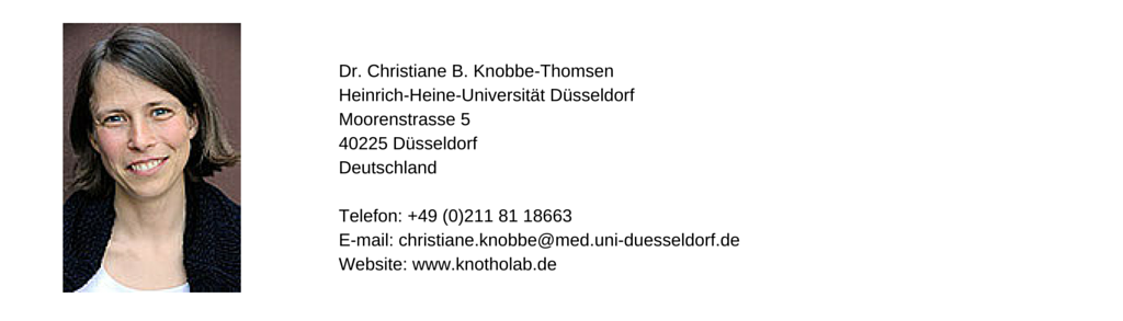 Christiane Knobbe-Thomsen